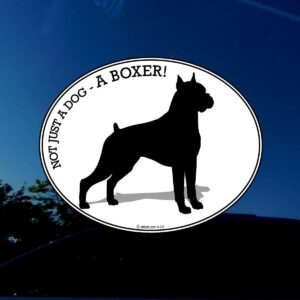 Boxer dog bumper sticker.