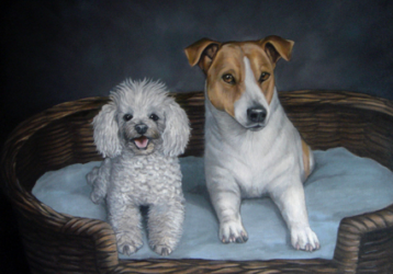 Jack Russel Terrier oil painting