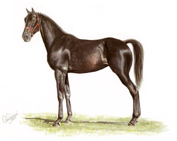 yearling horse painting