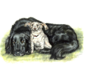 two dogs laying down