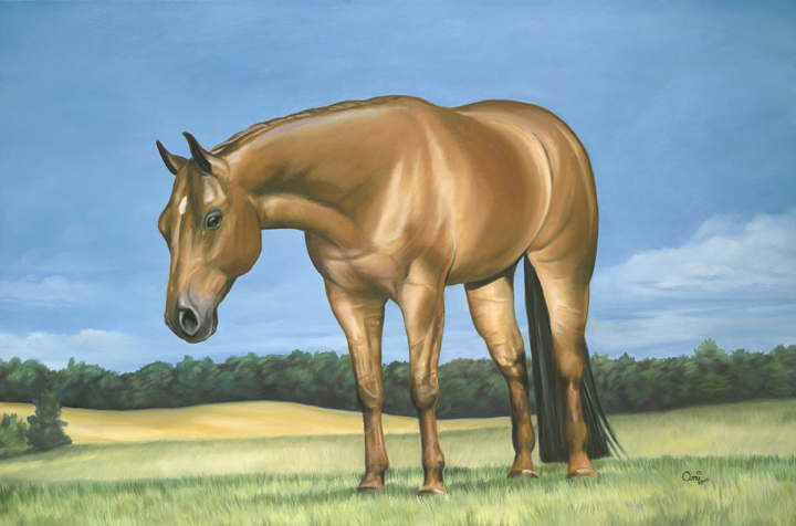 Rolex: Quarter horse oil painting