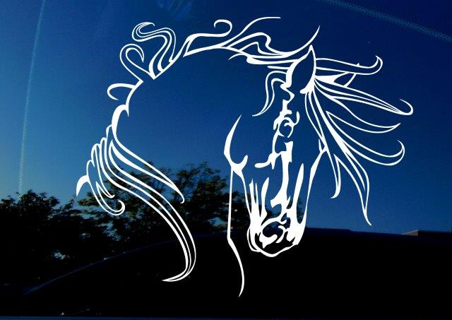 Amiart horse vinyl decal. Tribal indian equestrian war horse sticker for cars, trucks, SUVs, etc. Image features horse with long flowing mane on reflective car window as background.