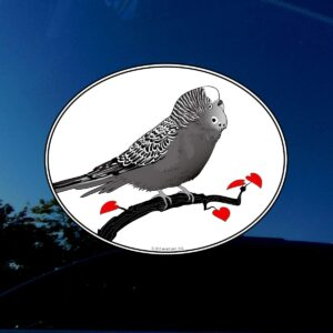 Parrot decal on window.
