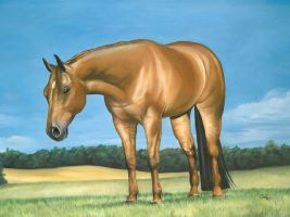 Light brown horse.